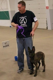 "Larry Pickett handling Best Puppy ""Colt"" in non-licensed class"