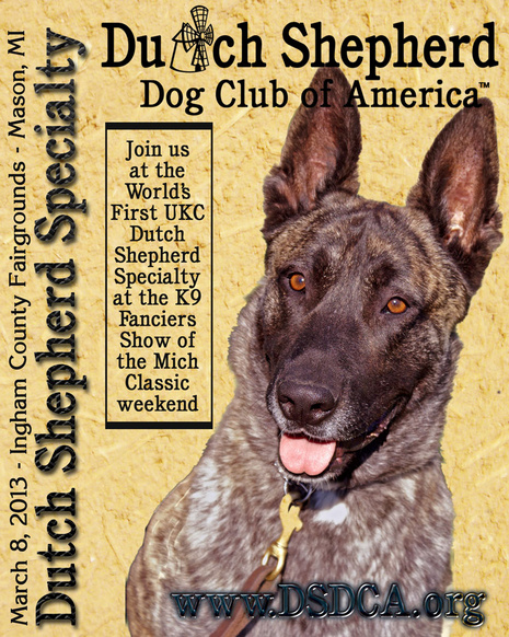 Dutch Shepherd Specialty hosted by the Dutch Shepherd Dog Club of America (www.DSDCA.org)
